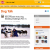 Pedigree & Battersea's Artic Dog Sled Challenge