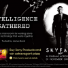 Intelligence Gathered: Sony's Global Skyfall Campaign