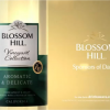 Blossom Hill Sponsors Channel 5's Dallas Return