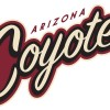 Coyotes 2.0: A New NHL 2016/17 Season Ad Campaign That Claims Not To Be An Ad Campaign